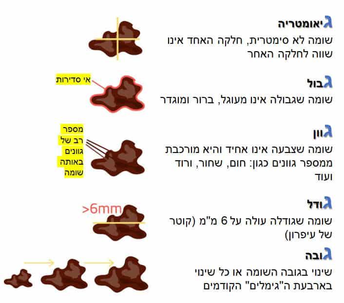 חמשת הגימלים המהווים סימנים מחשידים למלנומה